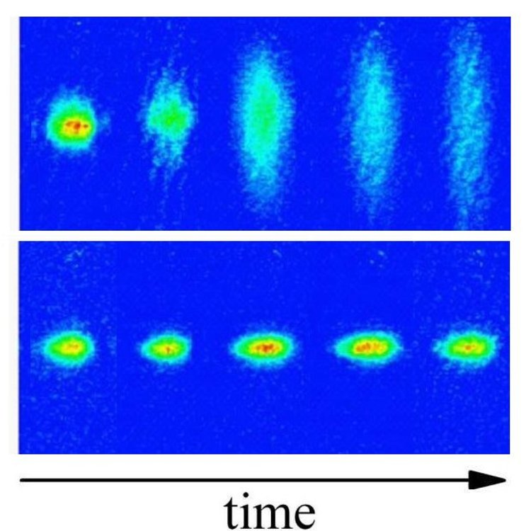 Localized by disorder. Images of temporal evolution of the Bose-Einstein Condensate (BEC). Without disorder (top) the BEC expands freely in the non-confined direction, shown as vertical. With disorder (bottom) the BEC stays localized.