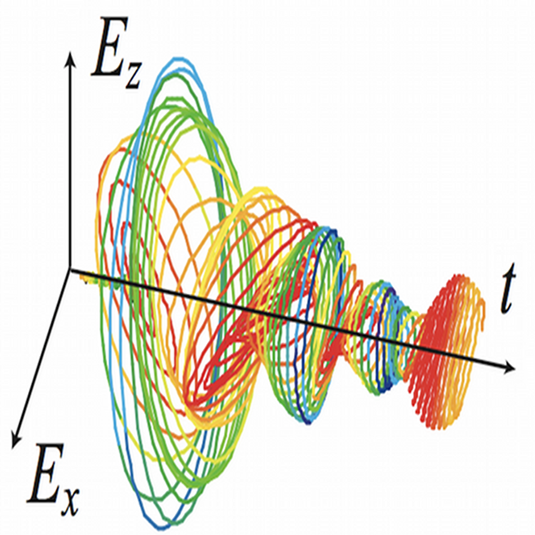 The plasmonic Ariadne's thread. Example of time signal generated by a plasmonic nanostructure following an external excitation. These signals reverted in time can be used to control light localization in the same nanostructure.