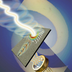 Detecting the twist of light. The orbital angular momentum (OAM) of light can be detected after having been converted into surface waves, known as surface plasmons. This is the principle behind the new detector of OAM proposed by researchers at Harvard University.