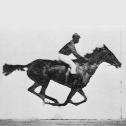 The galloping race horse. By taking pictures of a process at different times and recombining the images, one can get a better understanding of a dynamical process. This picture, for example, proved that a race horse does take all feet off the ground while galloping. High-speed laser pulses can be used to image fast processes like electrons orbiting in molecules at different times.